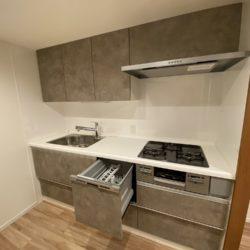 食器洗い乾燥機、浄水器付(キッチン)